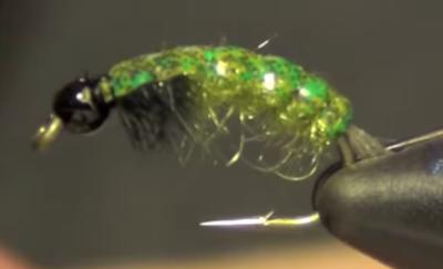 Barr's Net Builder Caddis Larva