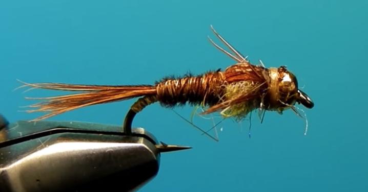 Bead Head Pheasant Tail Nymph
