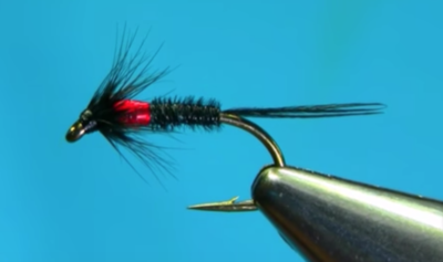 Black Pheasant Tail Hot-Spot Cruncher Wet Fly