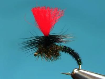 Black Pheasant Tail Klinkhammer