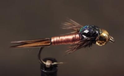 Copper John Quatro
