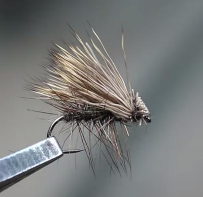 Elk Hair Caddis 2