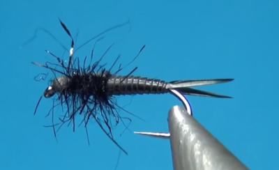 Simple Black Stonefly Nymph