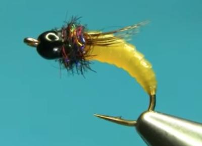 Simple Caddis Larva