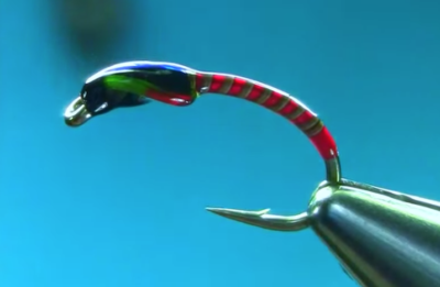 Simple Spring Quill Trout Buzzer