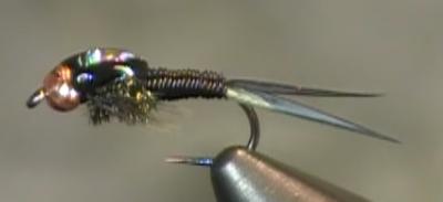 Copper john bead head nymph