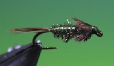 Gill abdomen mayfly technique