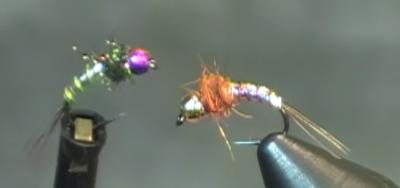 Lightning bug bead head nymph