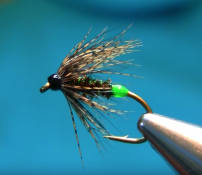Peacock & Partridge Flash-Back Spider Wet Fly