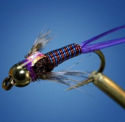 Prince Nymph purple variation