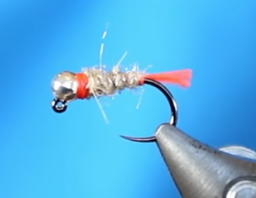 Trout and feather attractor-nymphs