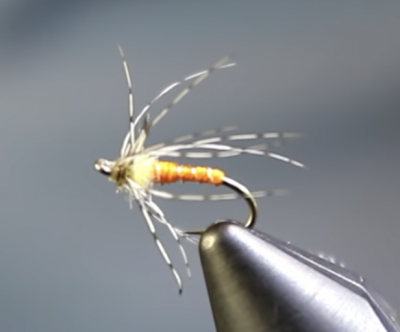 Partridge and Orange soft hackle