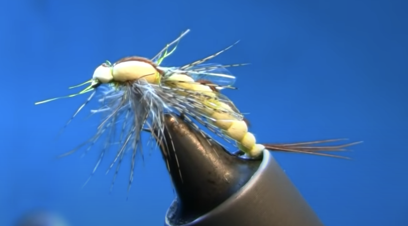 Fly Tying a Detached Body Mayfly Emerger Bis
