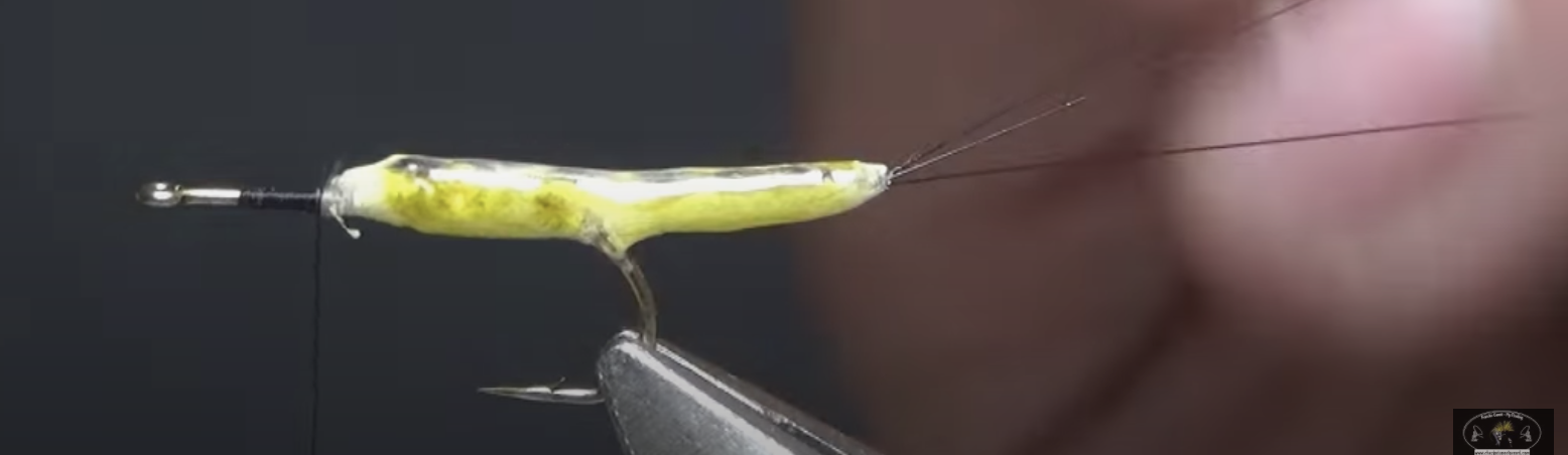 Montage d'une mouche de mai à corps détache