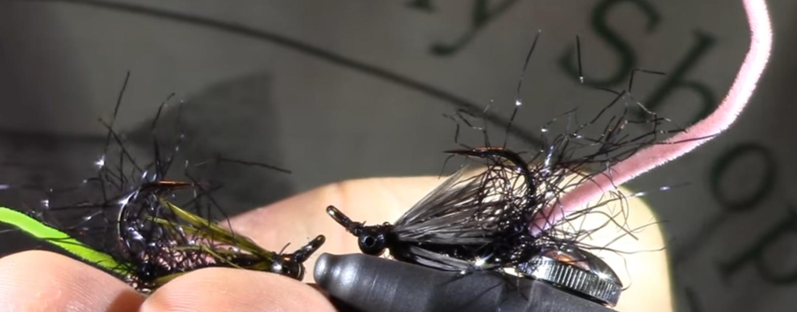 Montana's Hybrid Carp Fly